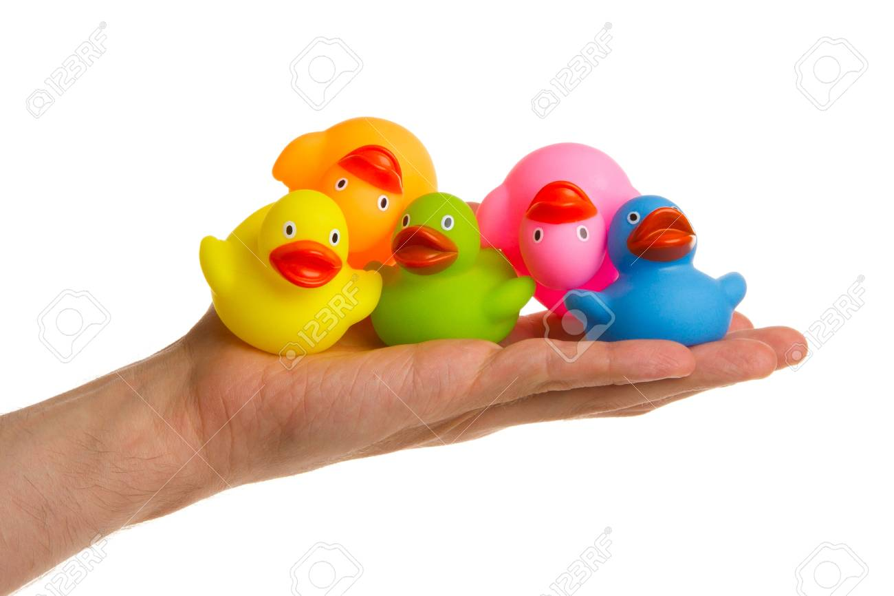 Rubber Ducks Isolated On A Adults Hand Stock Photo, Picture And ...