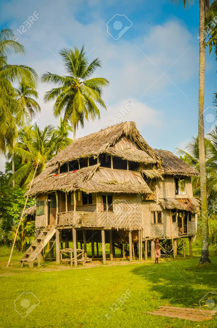 Large Simple House Made Of Wood And Straw Surrounded By Greenery In Avatip,  Sepik River