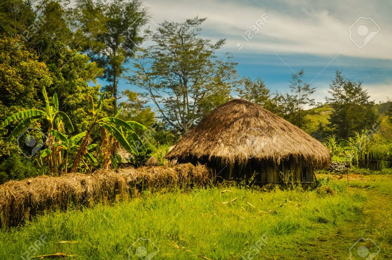 Photo Of Greenery And Small House Made Of Wood And Straw In Trikora, Papua,