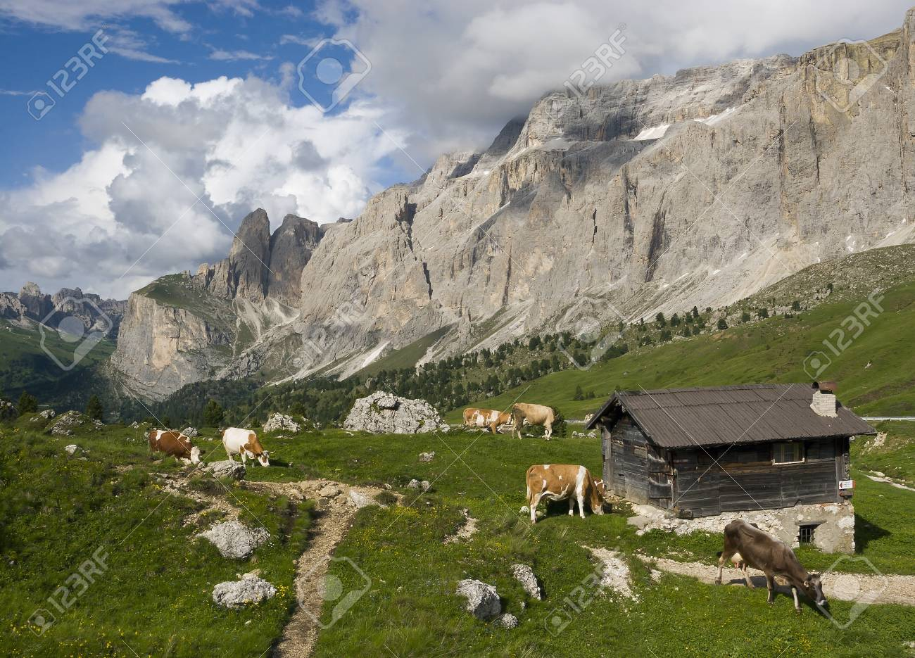 European alps, Italian Dolomites Panorama during a bright blue summer day. Stock Photo - 18019111