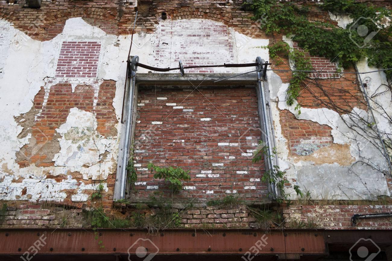 Peinture Pour Brique Extérieur extérieur d'entrepôt abandonné avec mur de briques, vignes vertes, châssis  métallique et peinture peeling
