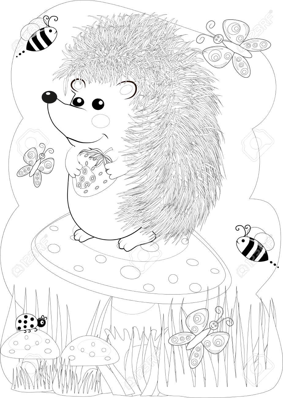 Illustration Zentangl Doodle Hedgehog Coloring Page Anti Stress For