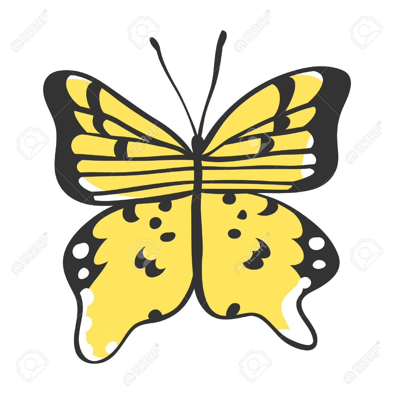 Isolated Butterfly. Illustration. Decorative Elements For Design ...