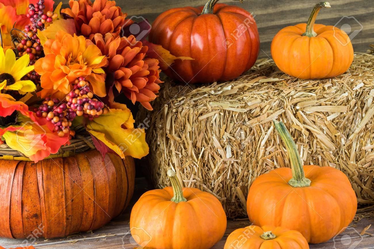 Herbst Dekor Mit Naturlichen Strohballen Kurbisse Blumen Lizenzfreie Fotos Bilder Und Stock Fotografie Image 64546391