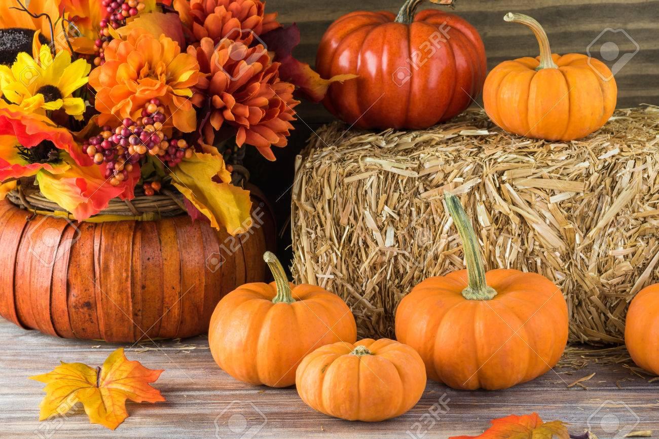 Herbst Dekor Mit Naturlichen Strohballen Kurbisse Blumen Lizenzfreie Fotos Bilder Und Stock Fotografie Image 64546400