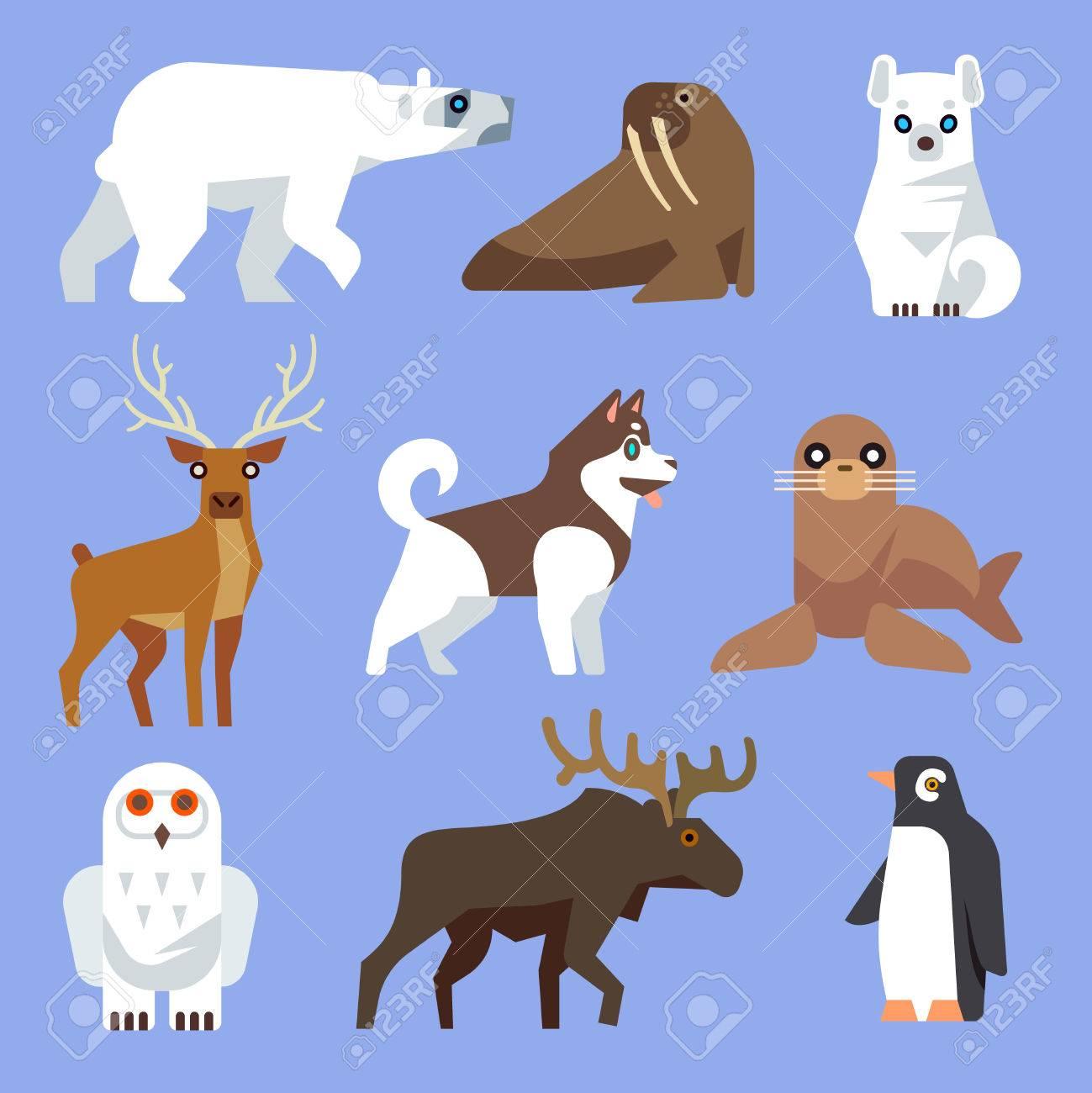 北の北極と南極の動物や鳥。ベクトル フラット コレクション。冬の野生