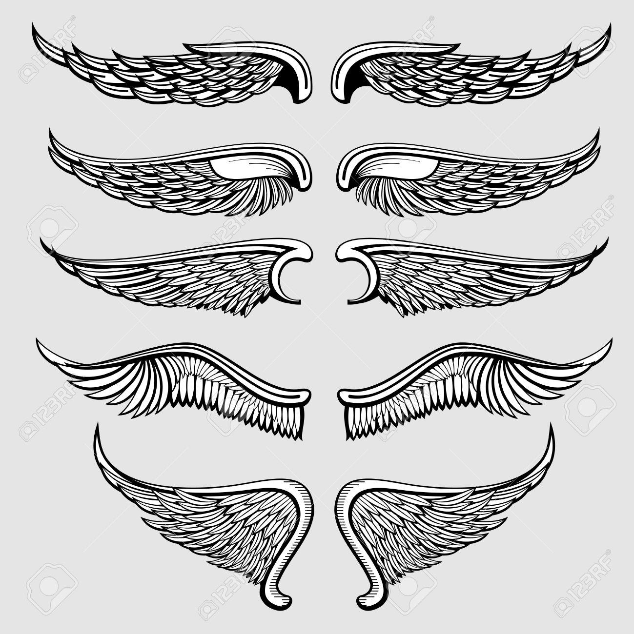 oiseau héraldique, ailes d'ange réglé. ailes ange tatouage