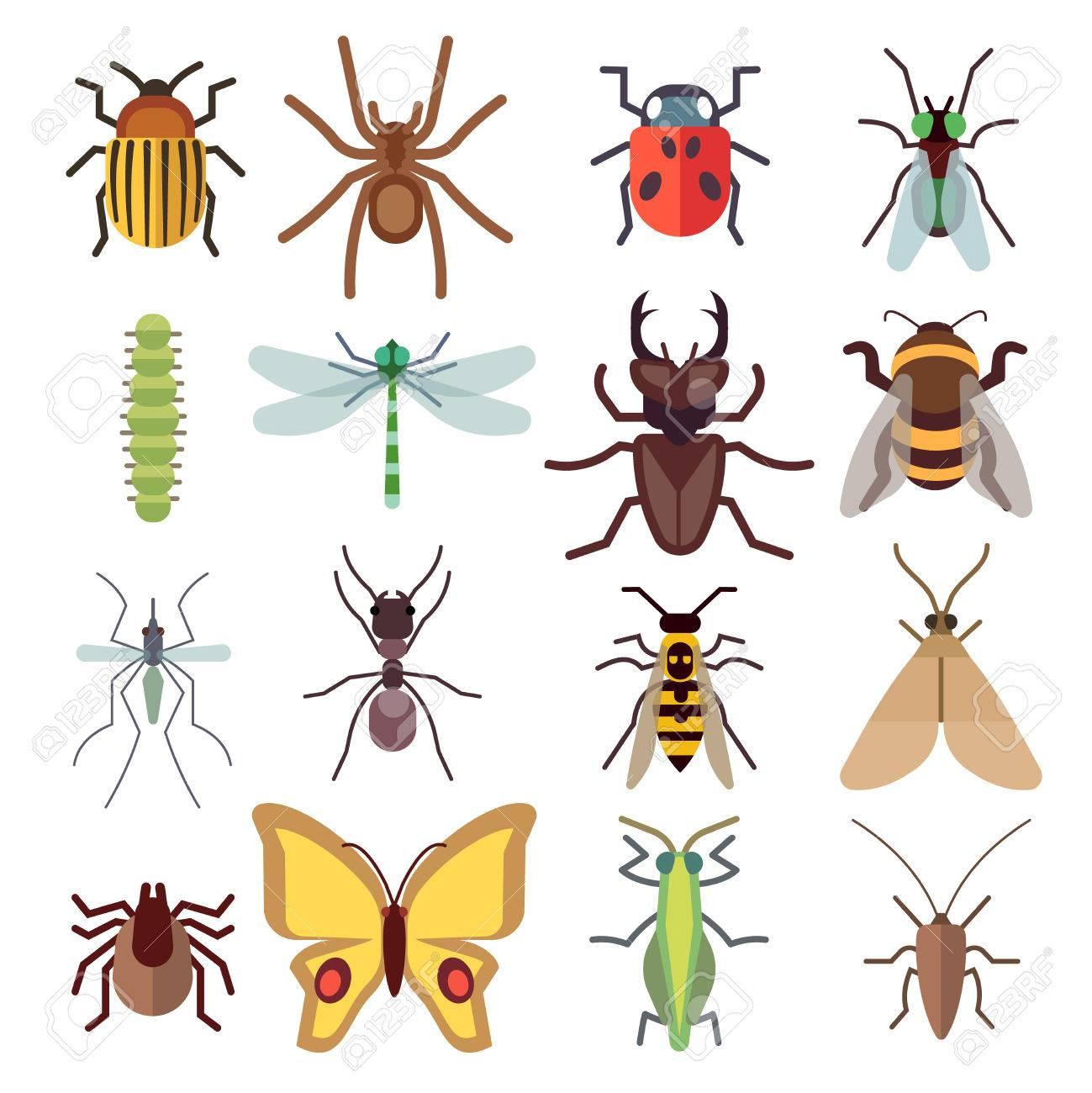 Vettoriale Icone Piatte Insetti Isolato Su Sfondo Bianco Bug E