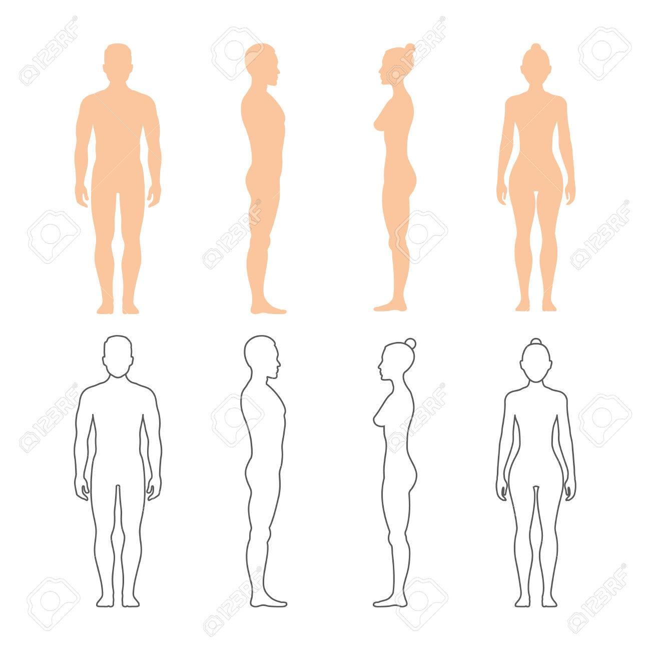 Männliche Und Weibliche Menschliche Vektor-Silhouetten. Mann Und ...
