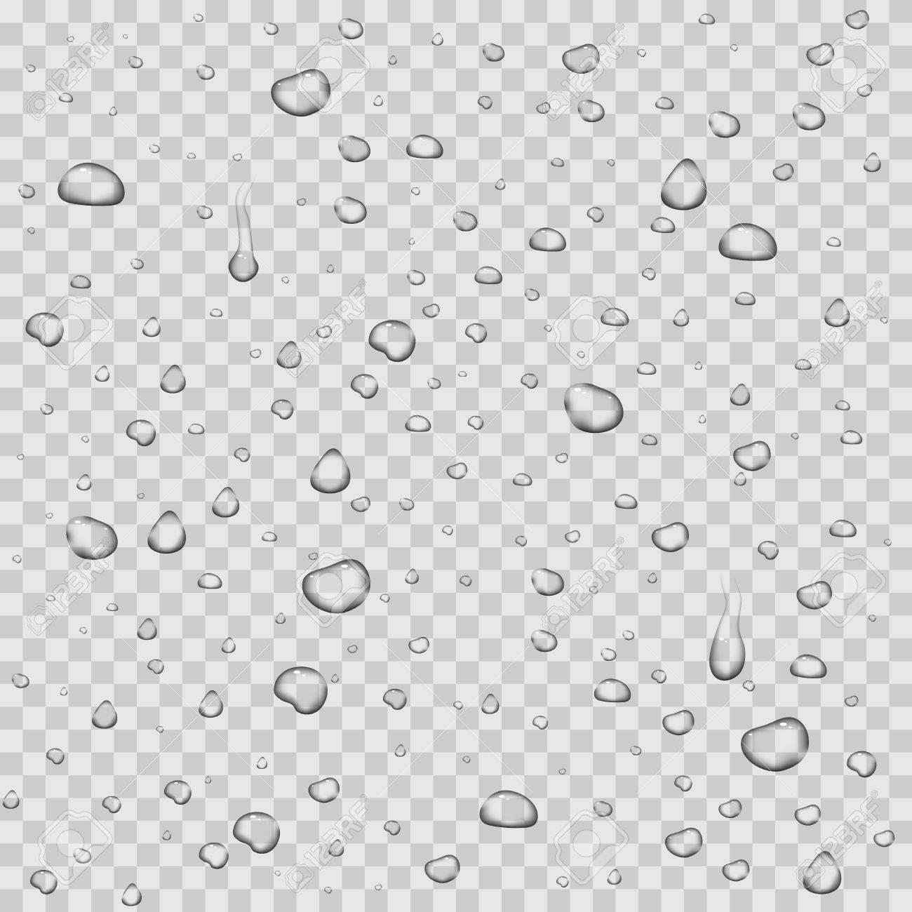 realistic vector water drops transparent background clean drop