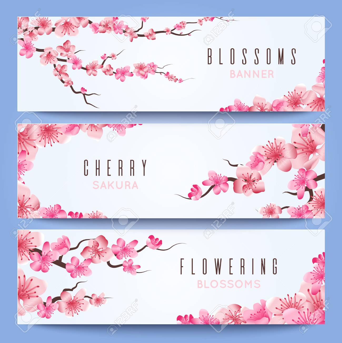 Wedding Banners Template With Spring Japan Sakura Cherry Blossom
