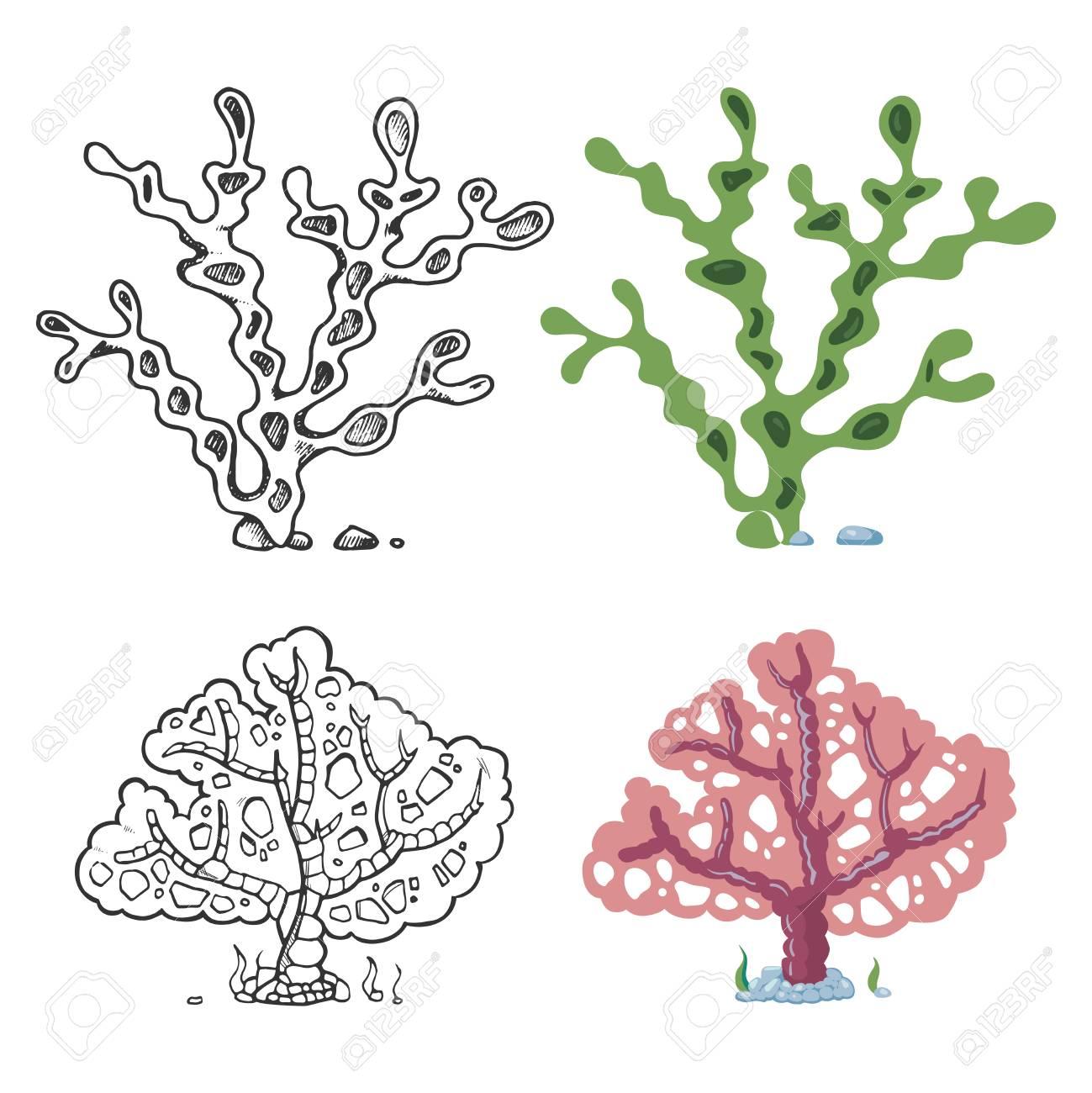 Coloriage Algues avec échantillon lumineux   corail et plante sous marine