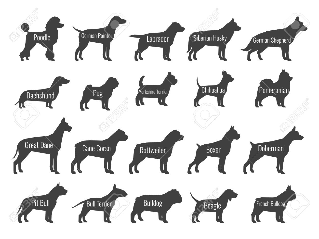 Black dog breeds vector silhouettes isolated on white background - 102080234