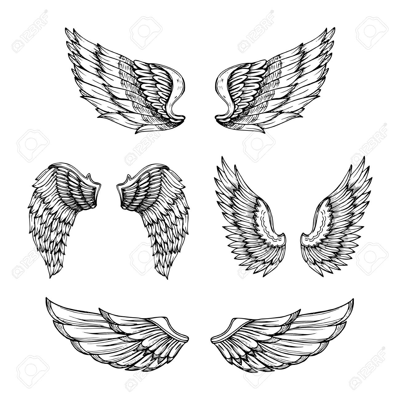 Hand drawn wing. Sketch angel wings with feathers. Vector tattoo..