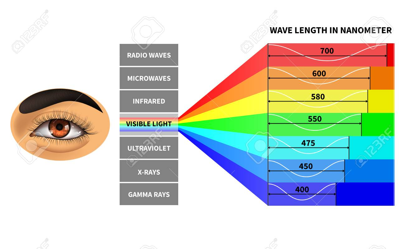 127269396-visible-light-spectrum-color-waves-length-perceived-by-human-eye-rainbow-electromagnetic-waves-educa