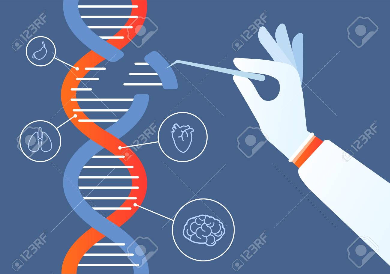 Dna engineering. Genome crispr cas9, gene mutation code modification. Human biochemistry and chromosomes research vector concept. Illustration of gene engineering, mutation code genetic - 125627918