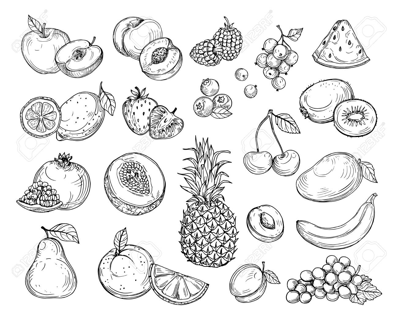 Sketch fruits. Strawberry melon, peach mango. Banana pineapple, raspberry grapes hand drawn fruit berry vector set. Illustration of melon and banana, cherry and lemon - 120906444