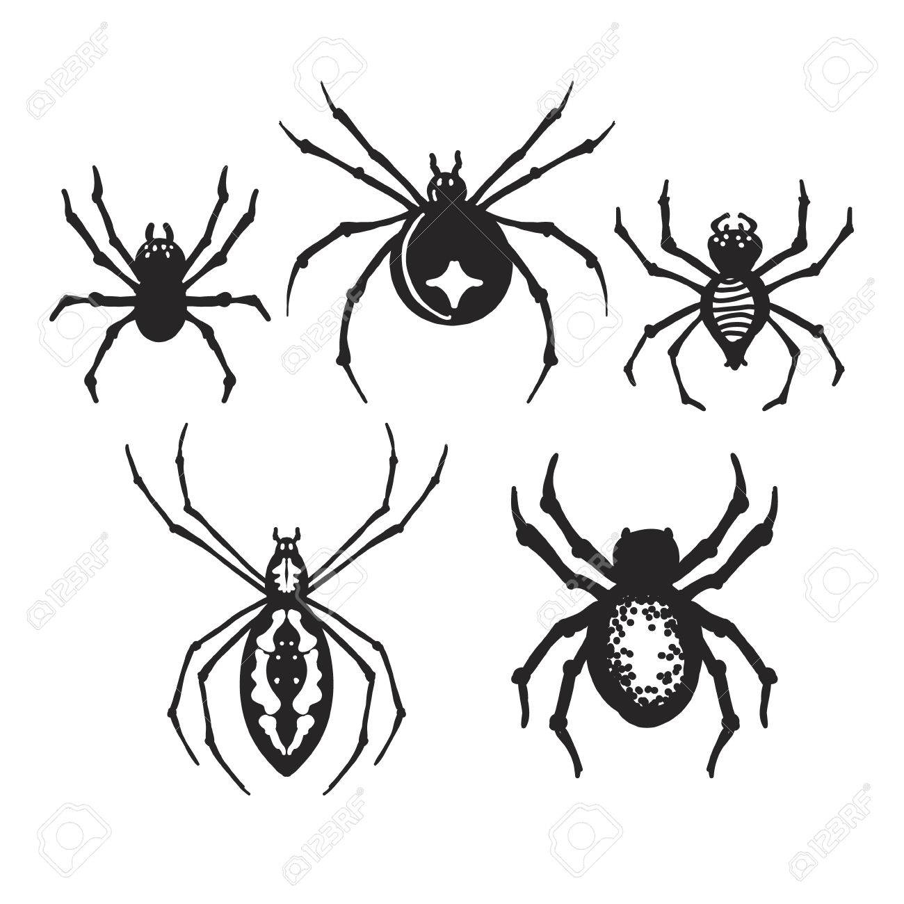Set Of Decorative Halloween Spiders Royalty Free Cliparts, Vectors ...