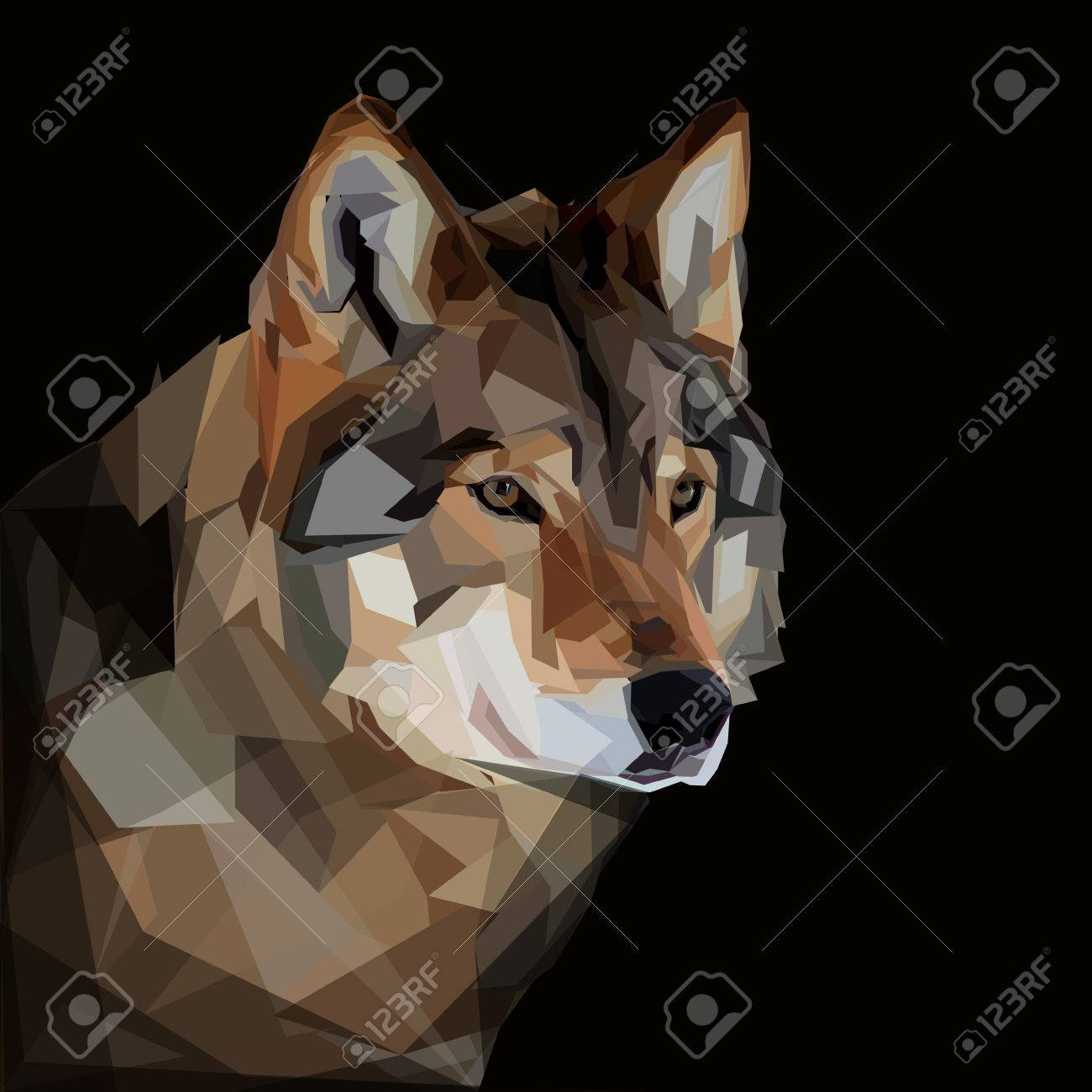 Cool Timber Wolf Head On Dark Background Royalty Free Cliparts Vectors And Stock Illustration Image 48676295