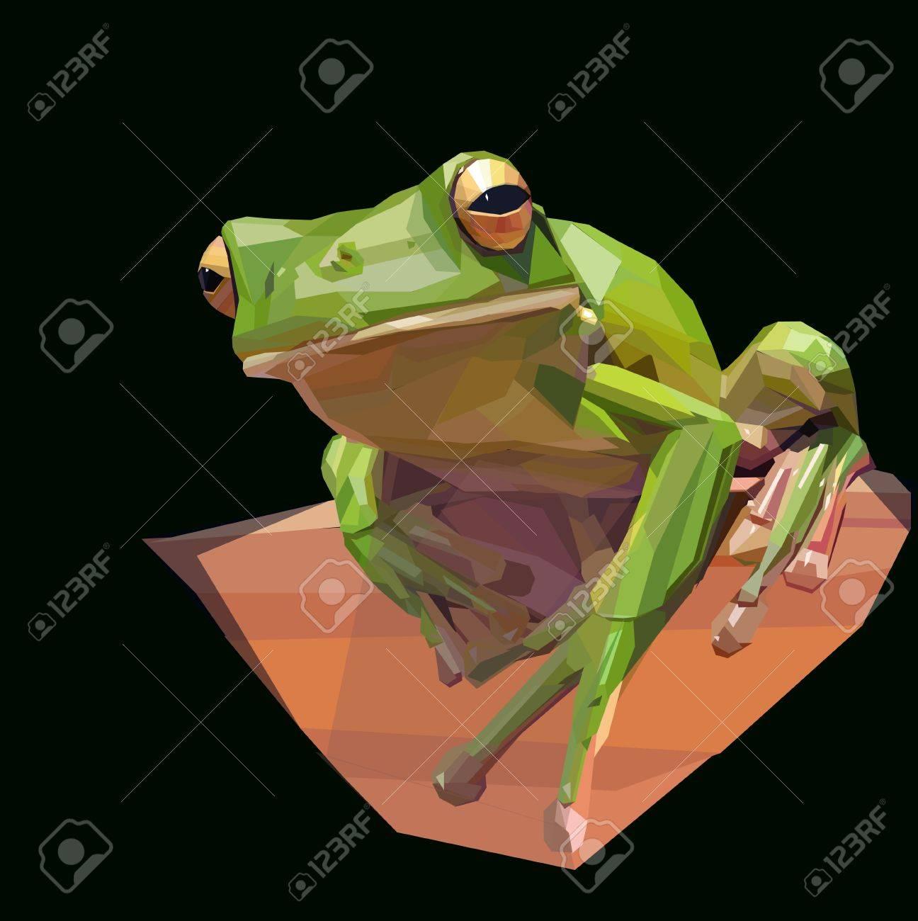 green tree frog sitting on dark background - 48676328