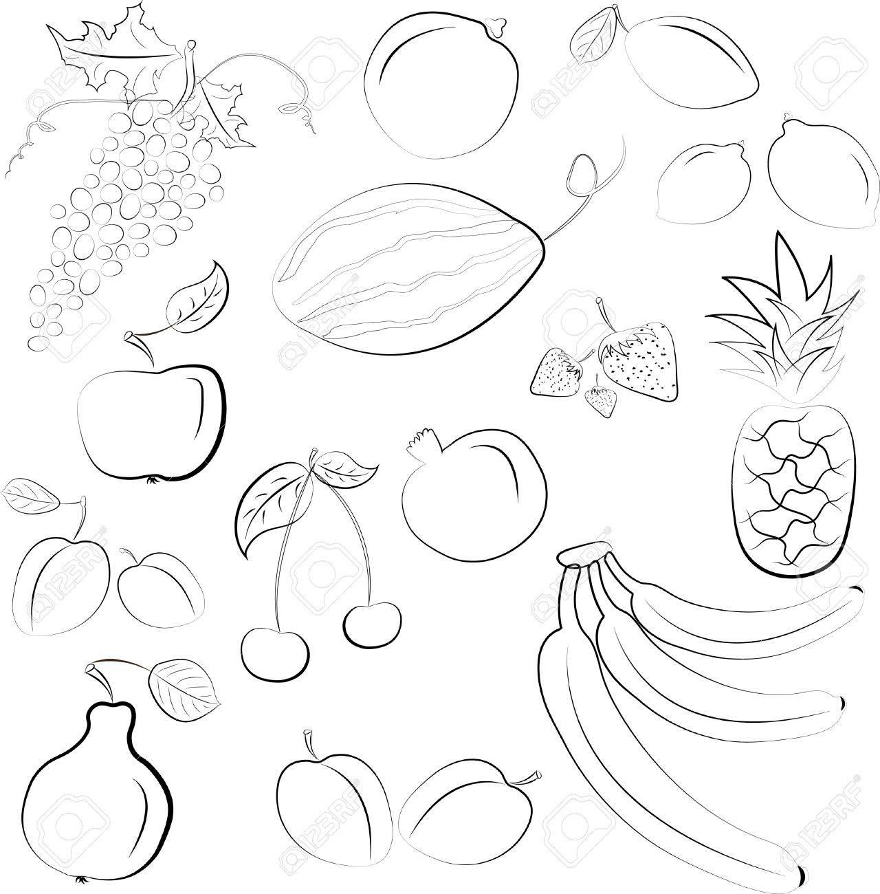 illustration - set of fruits Stock Vector - 11264564