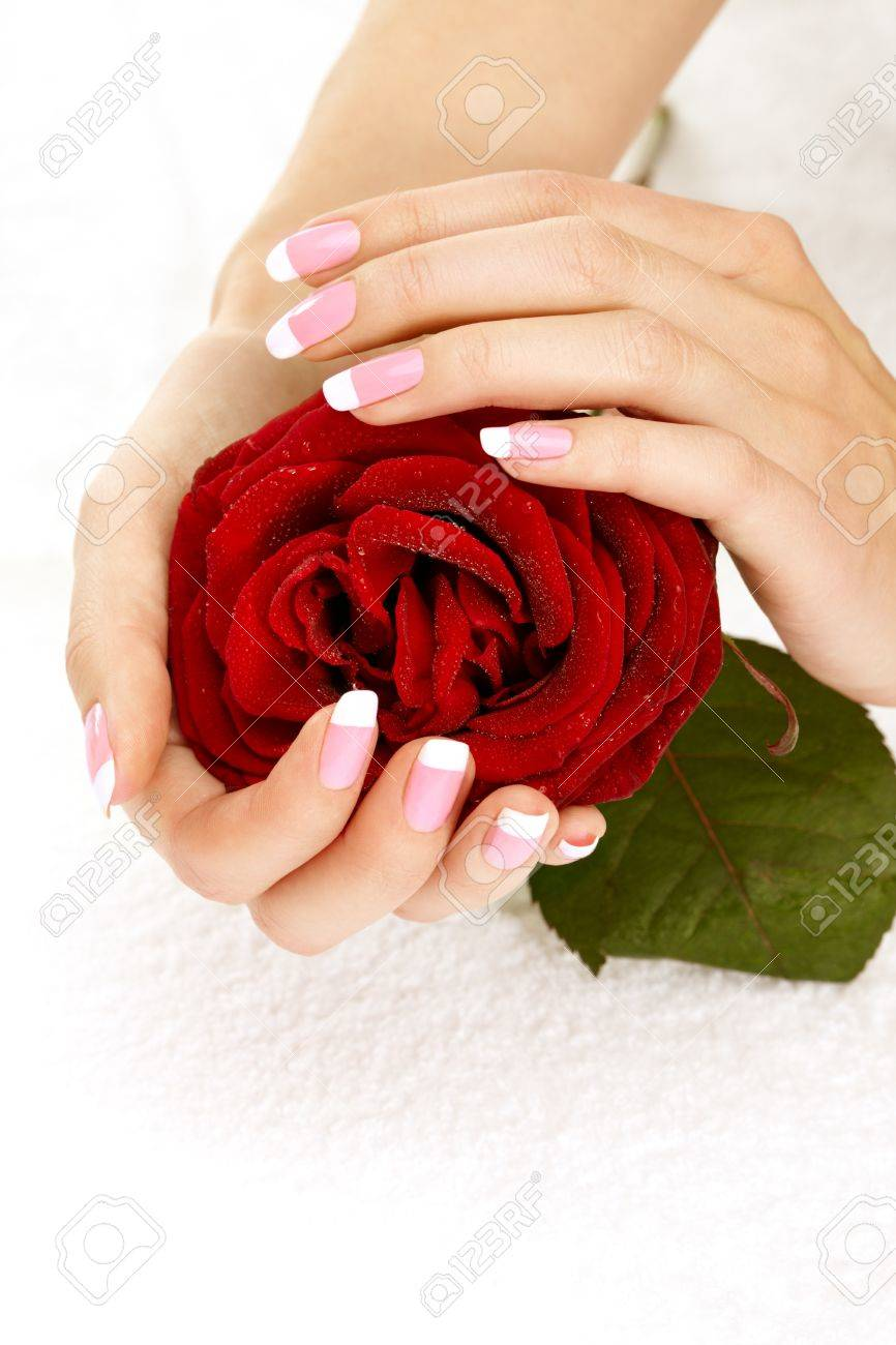 Beautiful manicure nails with a rose Stock Photo - 8580244