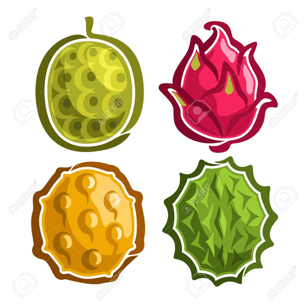 カラフルなエキゾチックなアイコンのベクトルを設定します果物 タイ