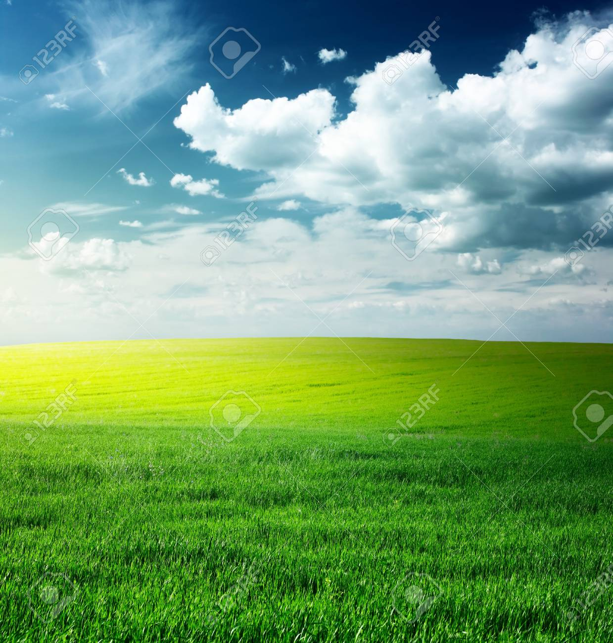 Green meadow and blue sky with clouds Stock Photo - 7112806