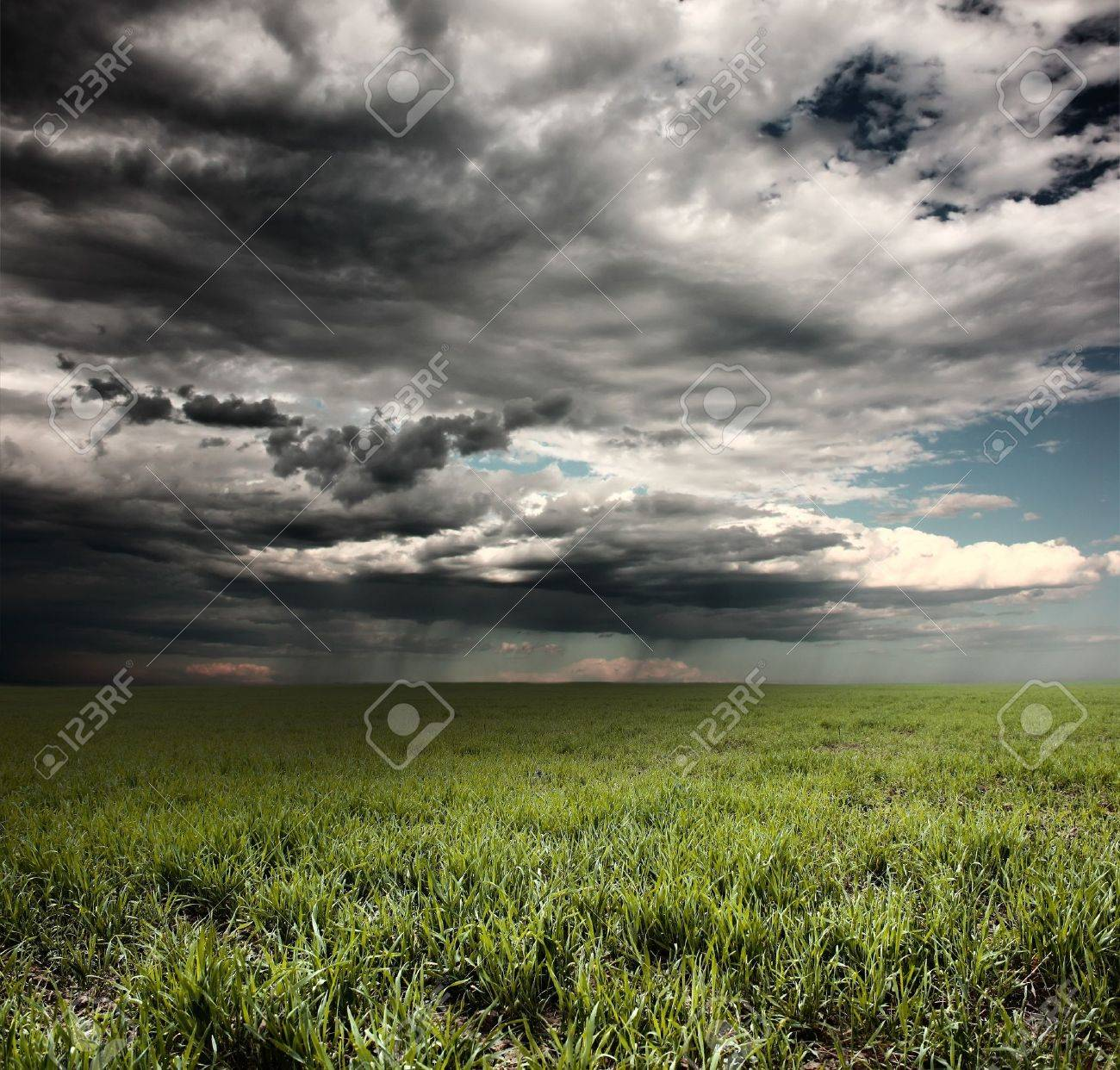 Storm clouds with rain over meadow with green grass Stock Photo - 7296703