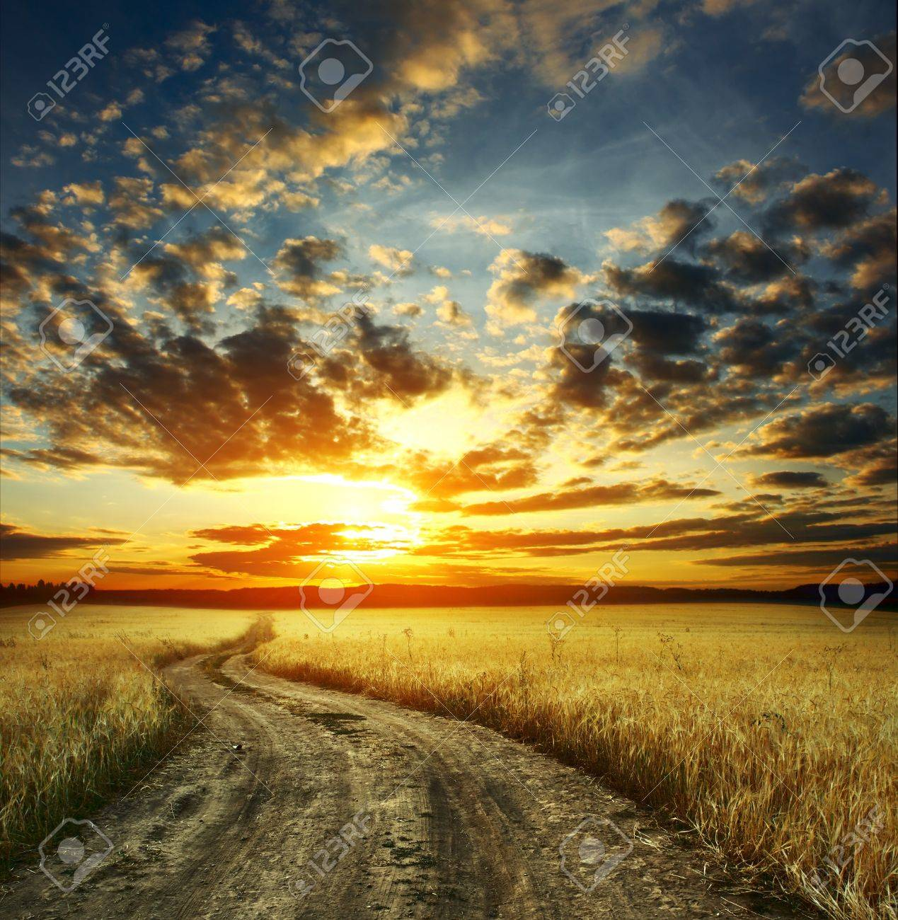 Road in field and cloudy sunset Stock Photo - 7556878
