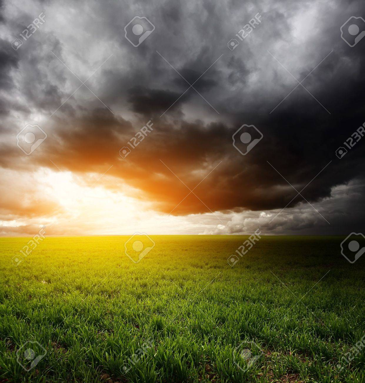 Storm dark clouds and light over field with green grass Stock Photo - 7791428