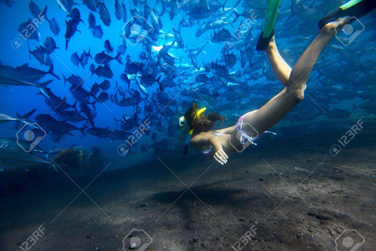 Young woman finning on depth with a school of Jack Fish on a breath hold Stock Photo - 16835636