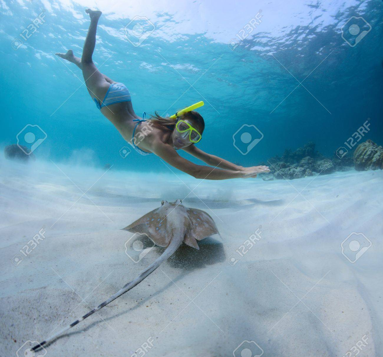 Underwater shoot of a young lady snorkeling and doing skin diving over sandy sea bottom with blue spotted ray on the foreground Stock Photo - 18043007