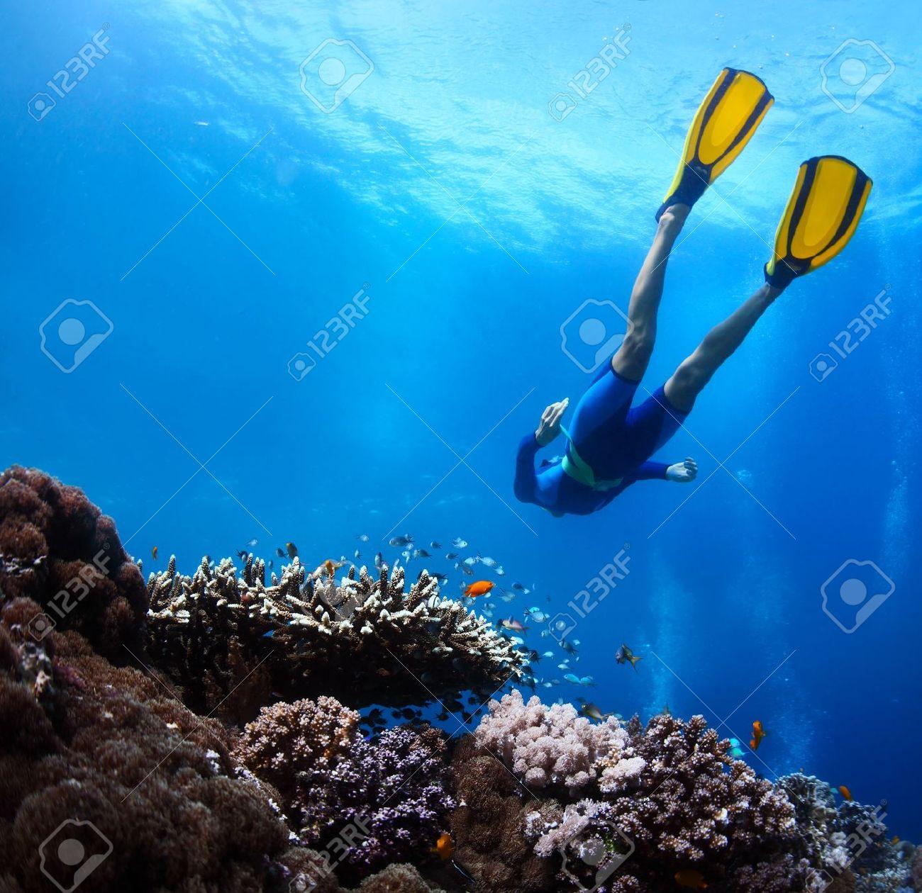 Freediver gliding underwater over vivid coral reef Stock Photo - 20329071