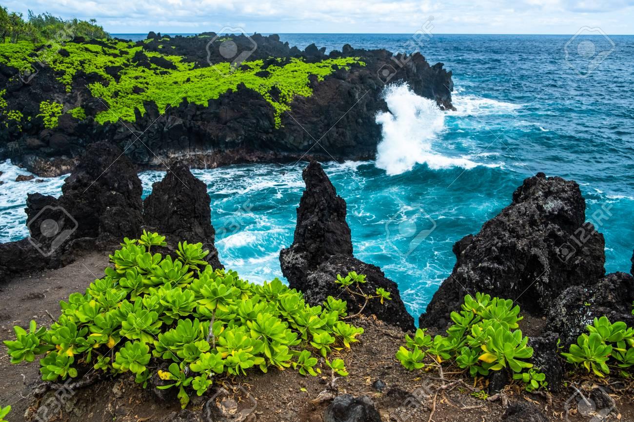 Sharp volcanic coast of the east Maui near the Waianapanapa State Park with green lush vegetation and fierce ocean waves. Hawaii - 120793378
