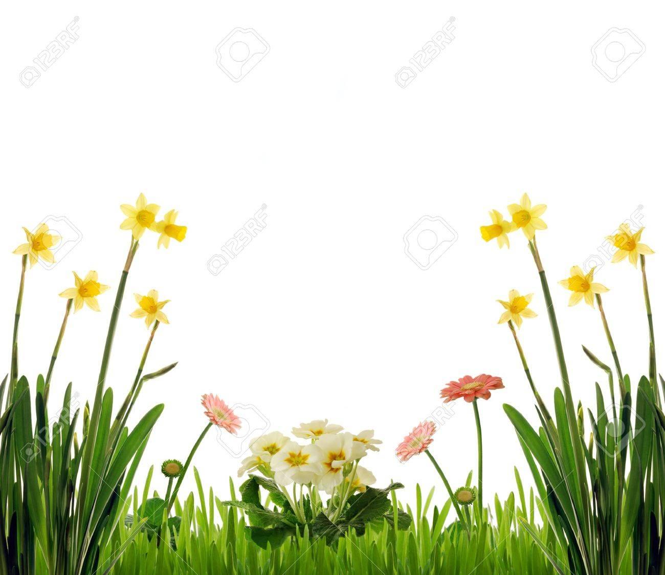 Garden scenery Stock Photo - 4480014