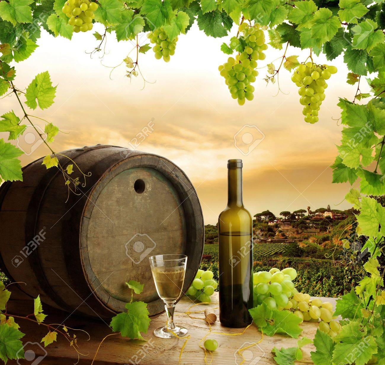 White wine still life with grapevine frame Stock Photo - 6508842