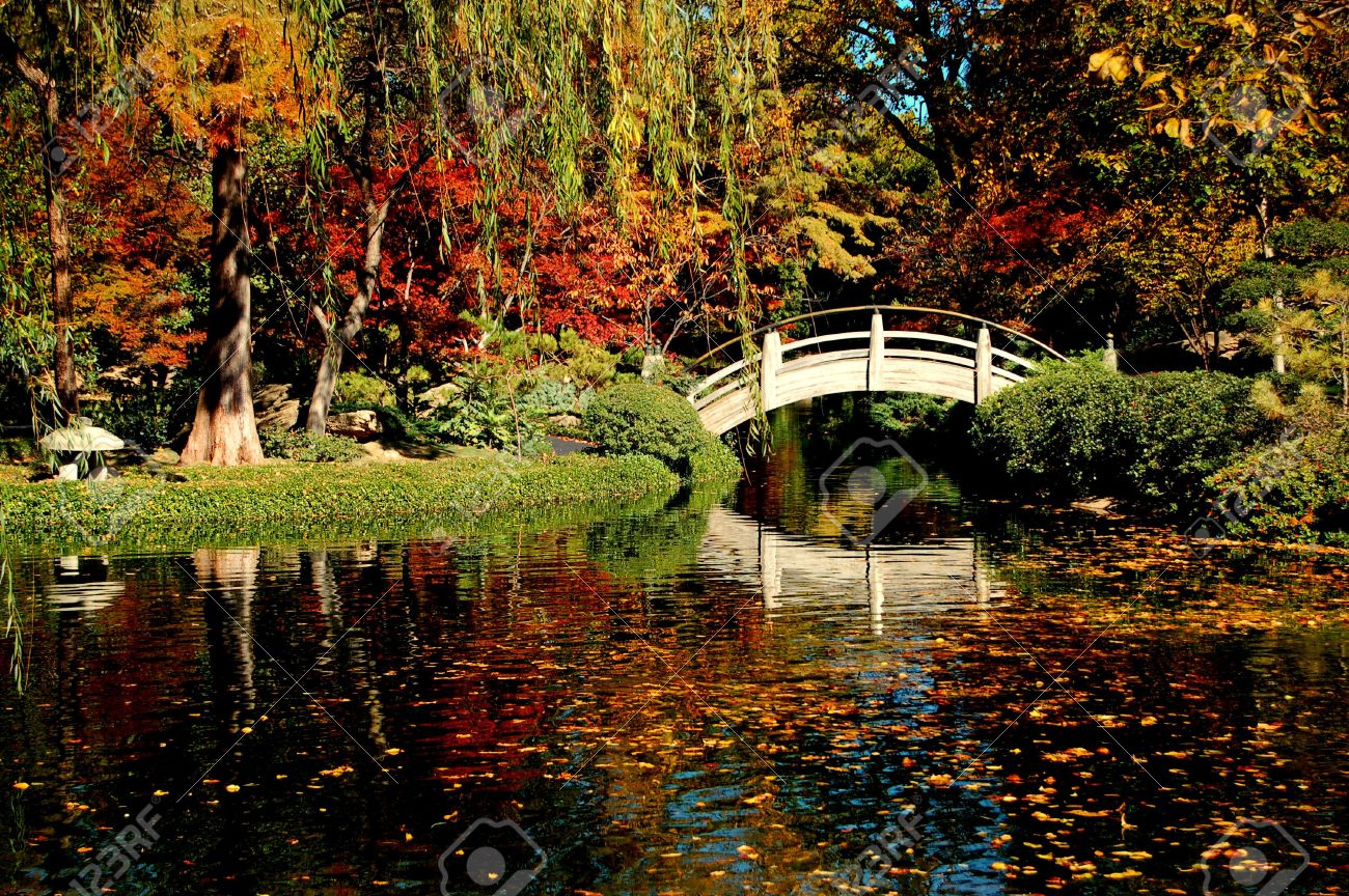 A Japanese Garden filled with Fall colors and foliage Stock Photo - 2038256