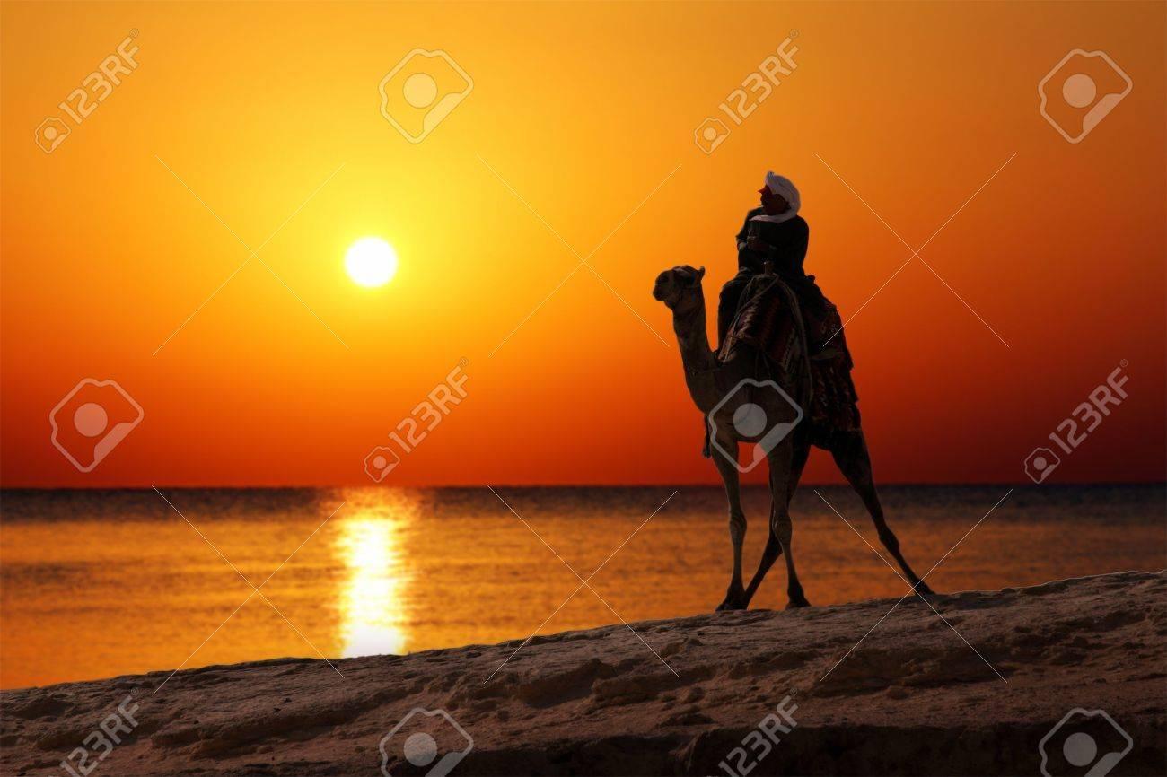 bedouin on camel silhouette against sunrise over sea - 9304547