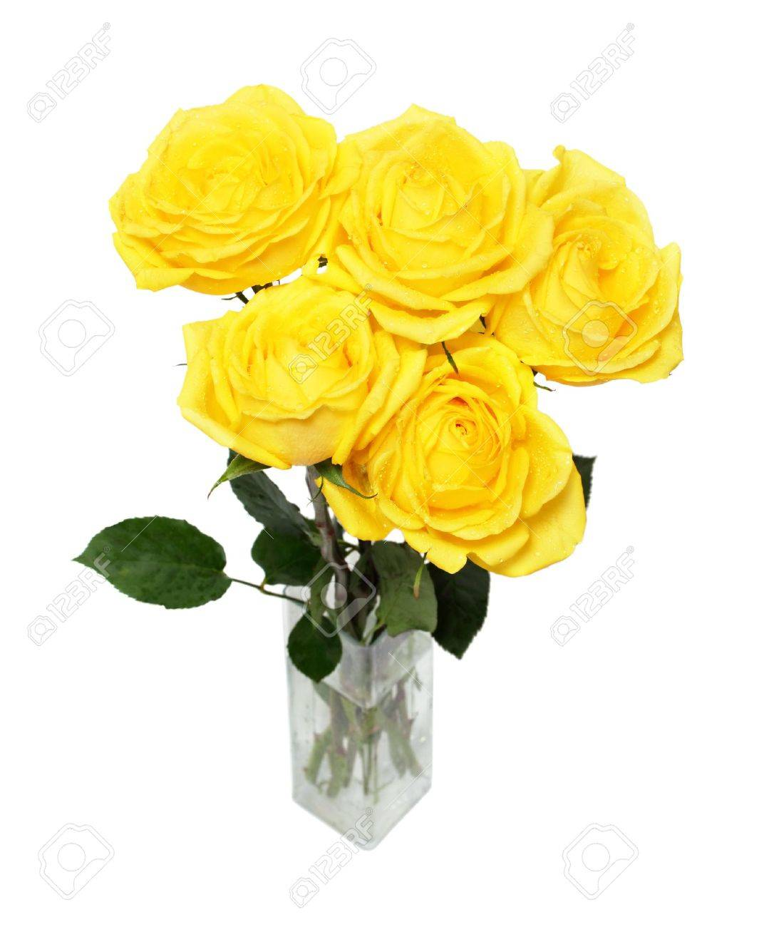 bouquet of yellow roses isolated on white - 12523274