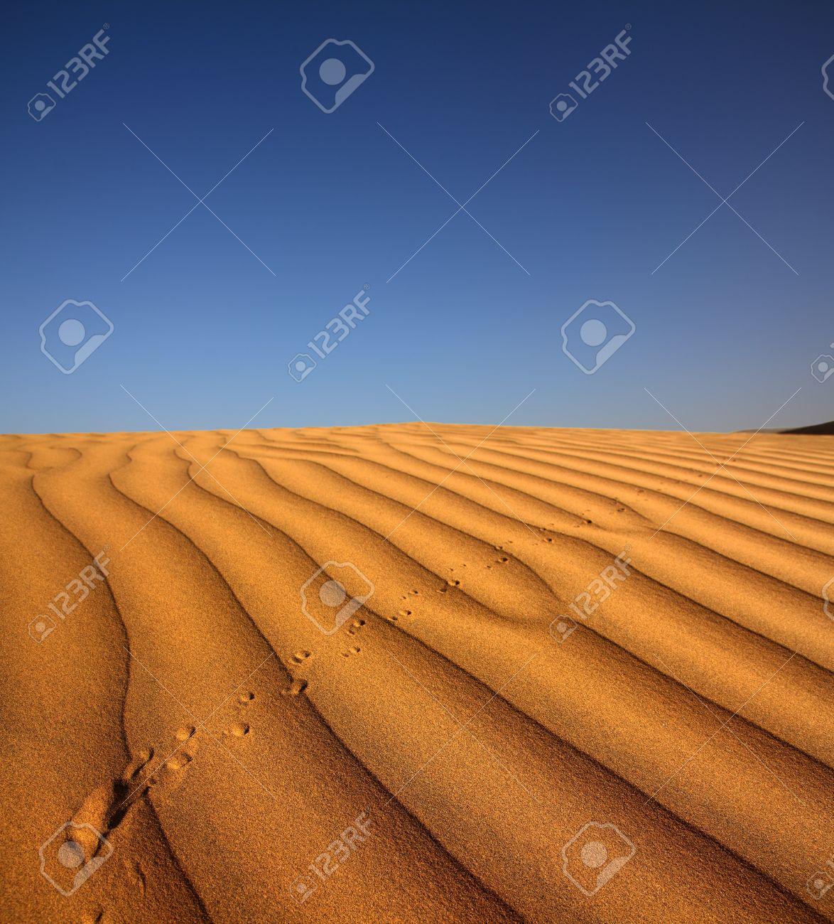 footprint on sand dune in desert at evening Stock Photo - 18640679
