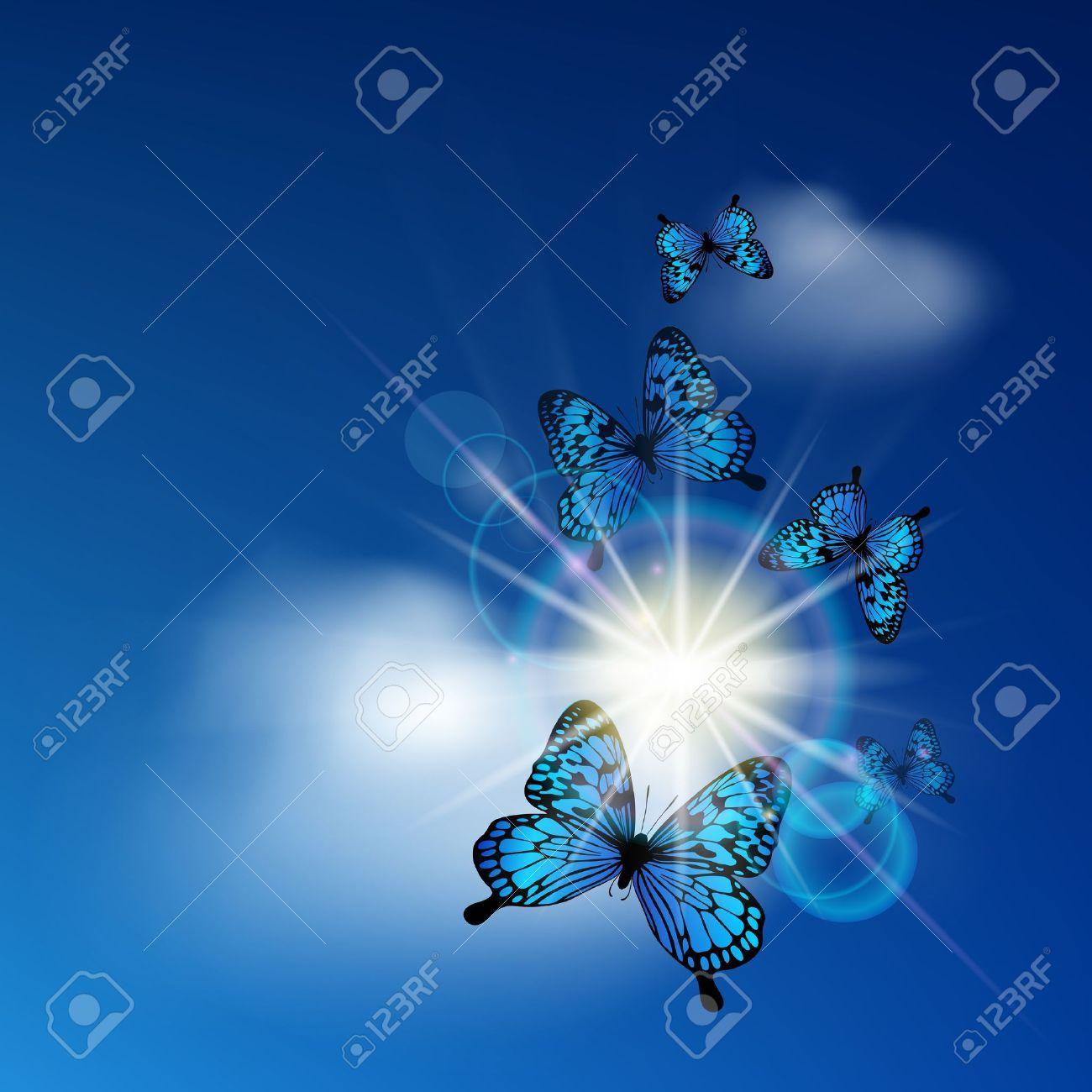 Blue butterflies flying against the solar sky - 13172654
