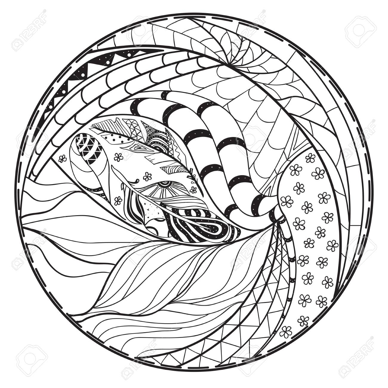 Zendala. Zentangle. Mano Círculo Dibujado Mandala Con Modelos ...