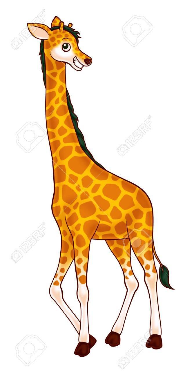 giraffe Stock Photo - 10416694