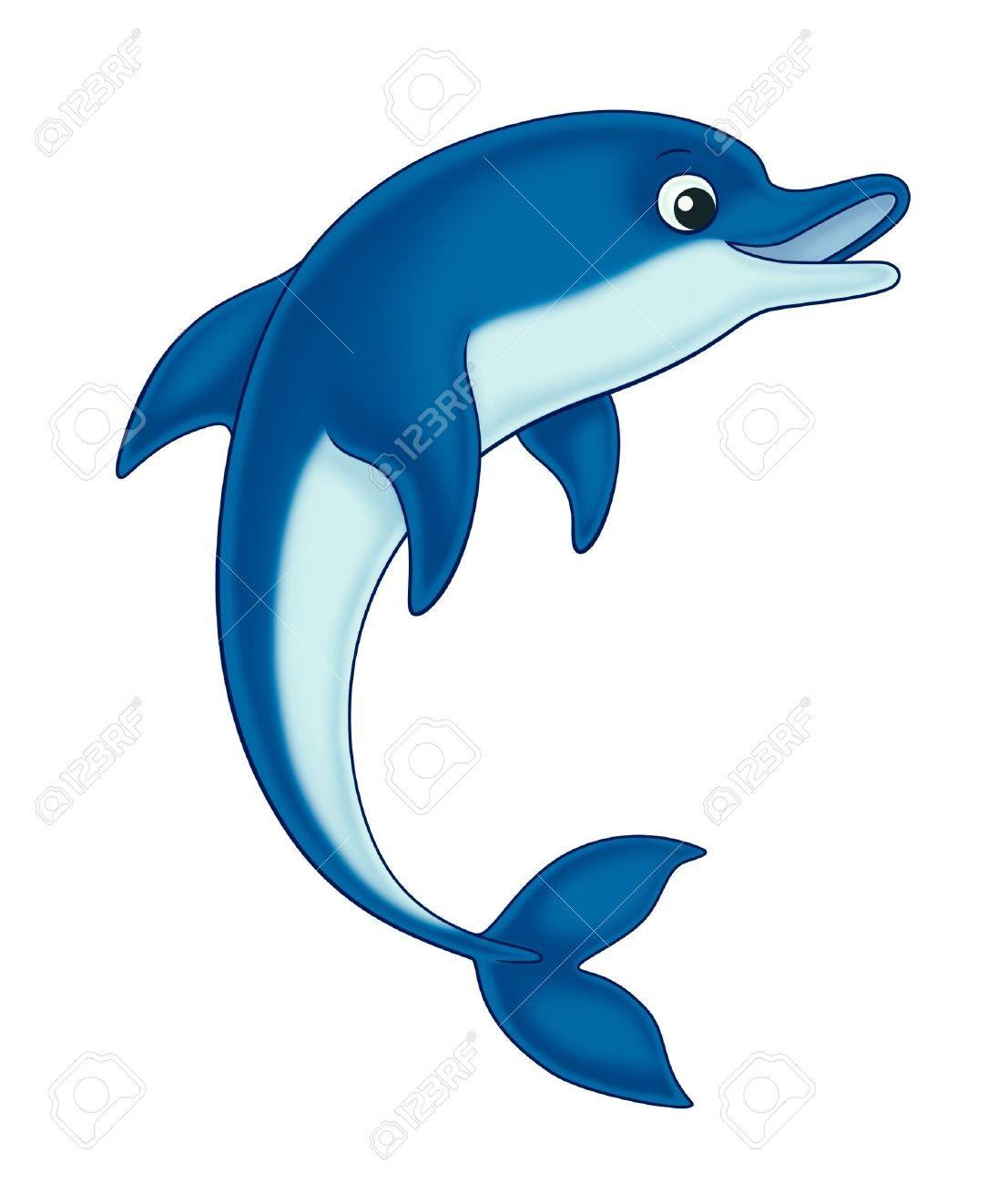 dolphin Stock Photo - 10416688