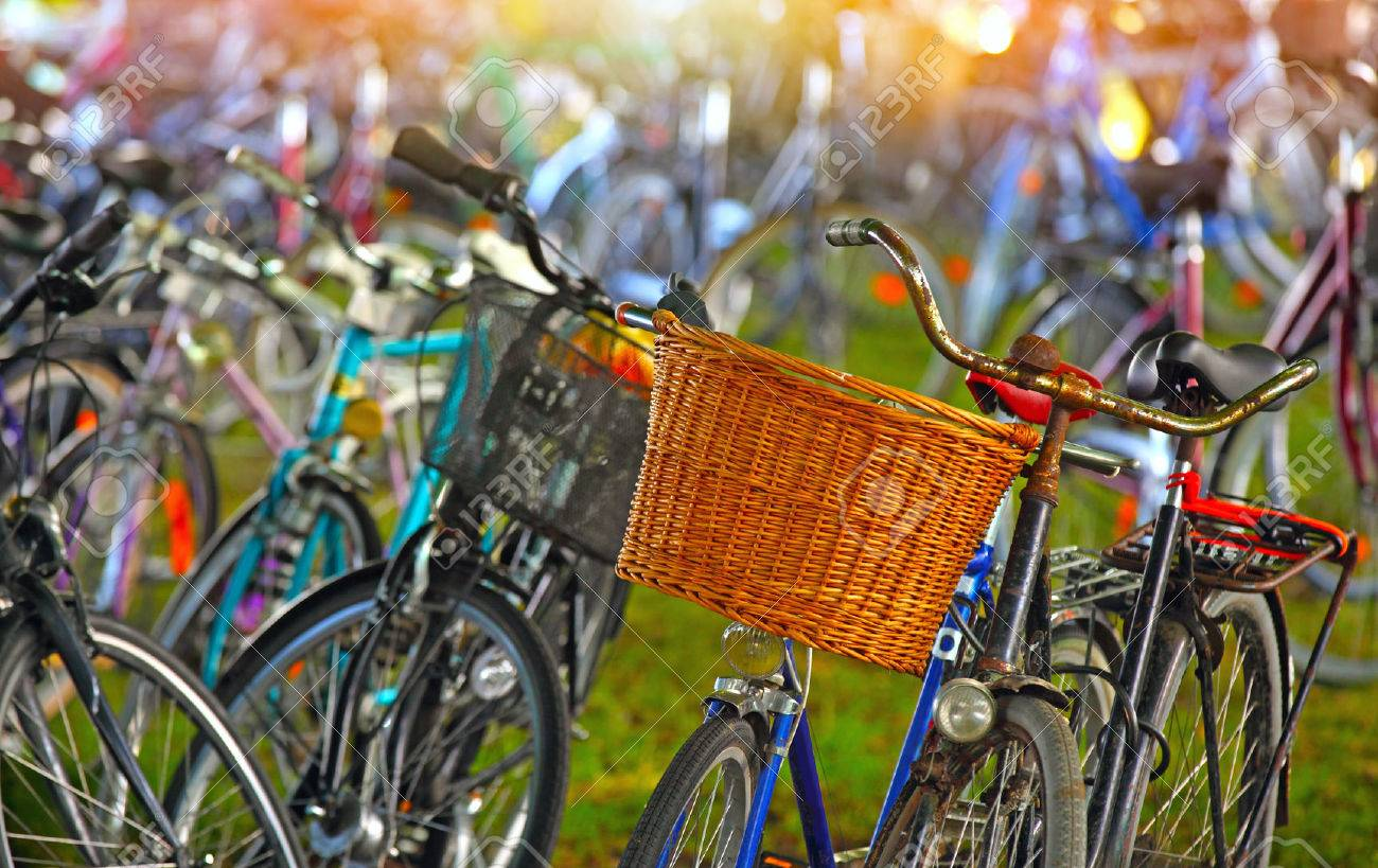 Bicycles parking lot - 44170825