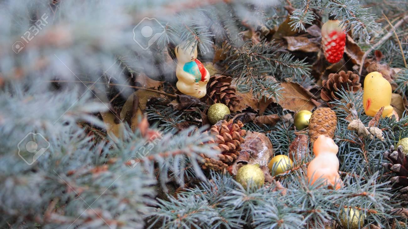Tannenbaum Draußen Schmücken.Stock Photo
