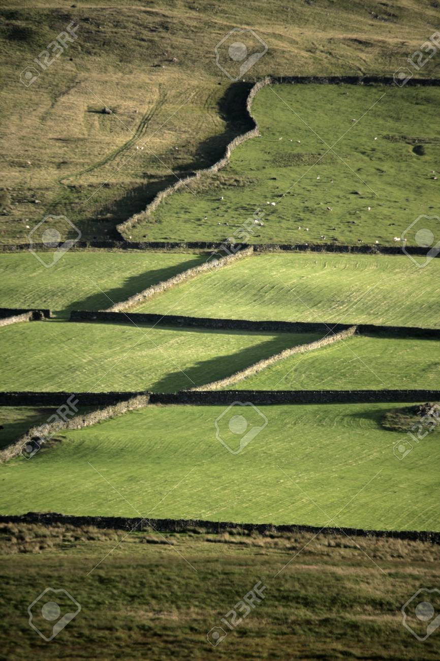 Birker Fell, Lake District in Cumbria, UK Stock Photo - 23569235