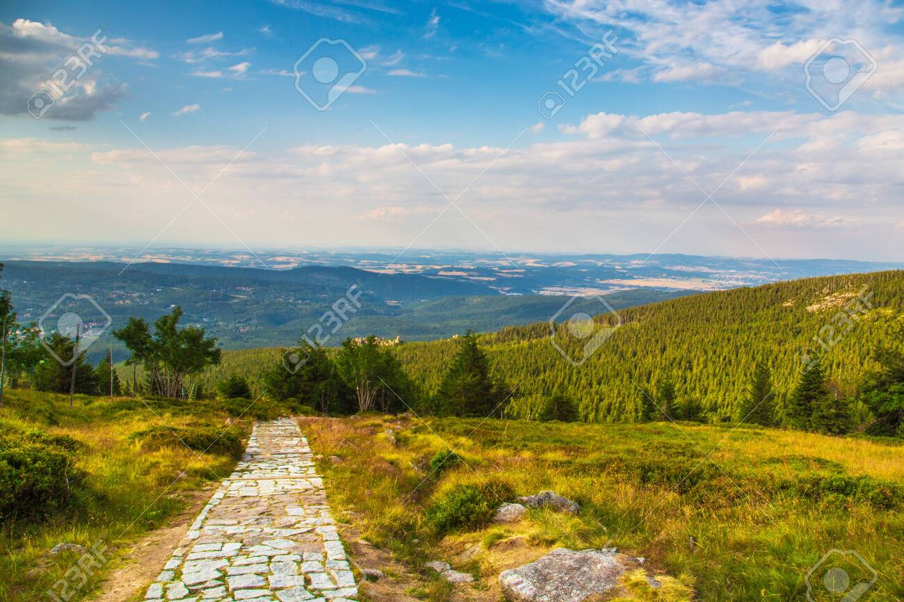 Green Meadow In Mountain with blue sky view - 133968814