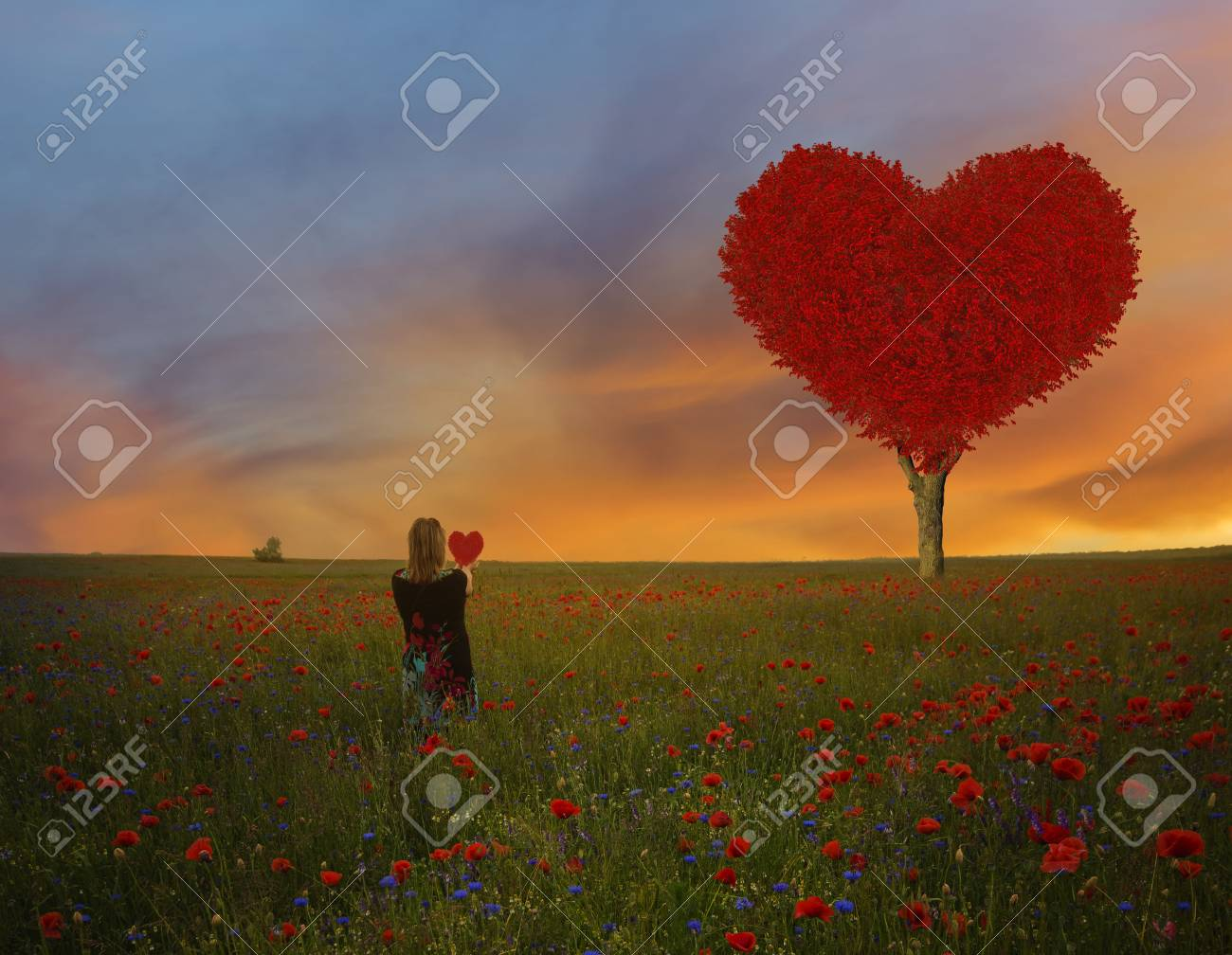Love Tree Heart Beautiful Shape Valentine Valentine S Day Stock Photo Picture And Royalty Free Image Image 92527129